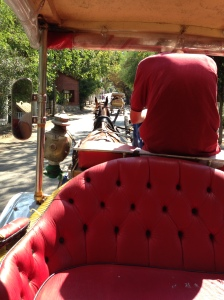 Horse And Carriage Ride, Buyukada Island, Istanbul