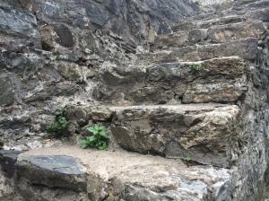 Stone Steps In Rumeli Hisari, Istanbul