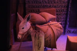 Donkey, Dubai Museum, Dubai, UAE