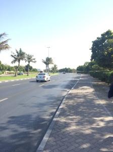 Palm Tree Lined Streets, Dubai, UAE