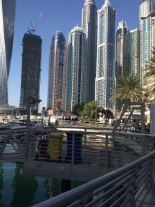 Dubai Marina Docks, Dubai, UAE