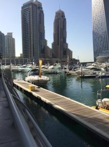 Yellow Boat Company, Dubai Marina Docks, Dubai, UAE