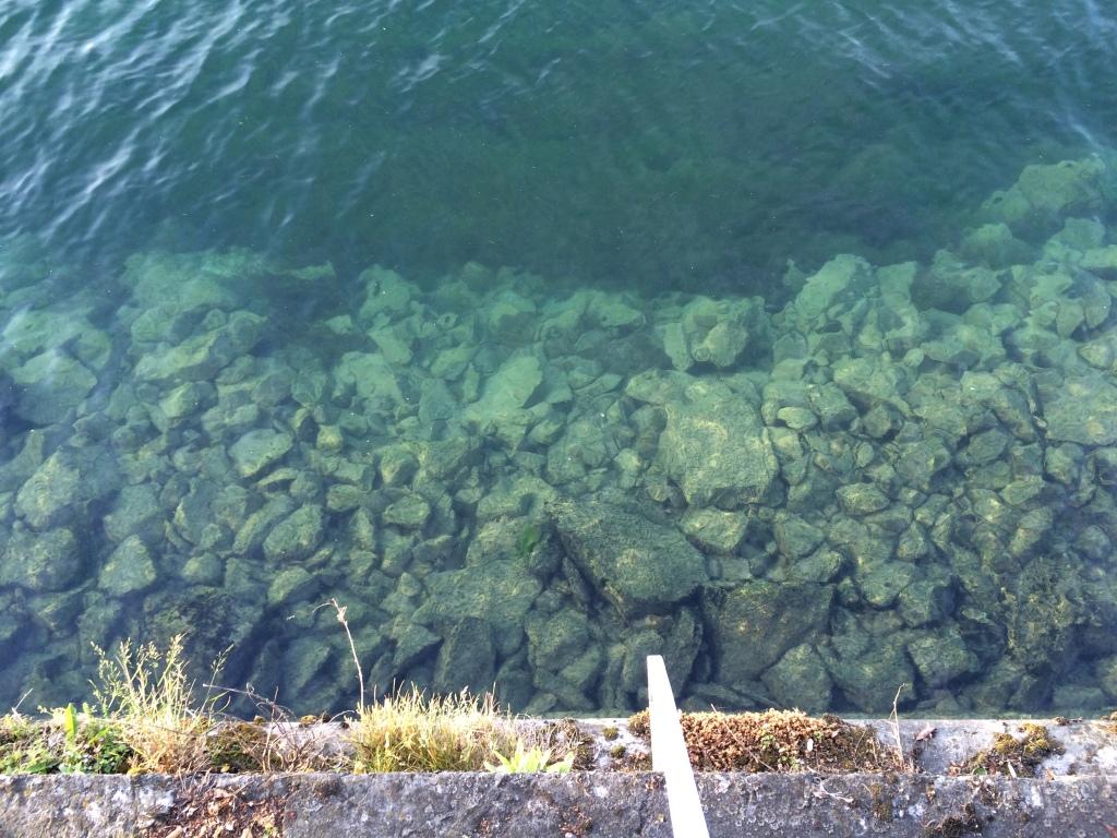 Clear Waters, Lake Geneva, Geneva, Switzerland