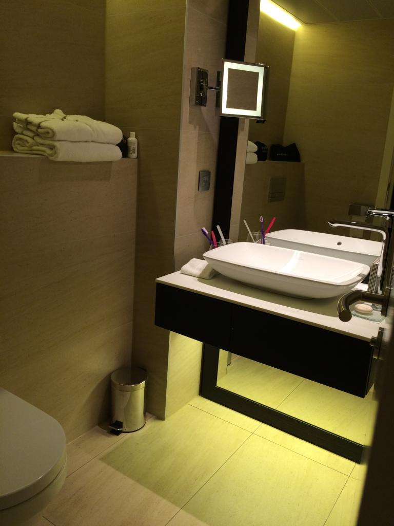 Bathroom At The Hotel, Brussels, Belgium