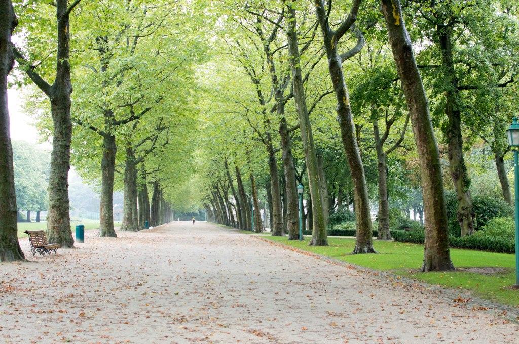 Cinquantenaire Park, Jubelpark, Brussels, Belgium