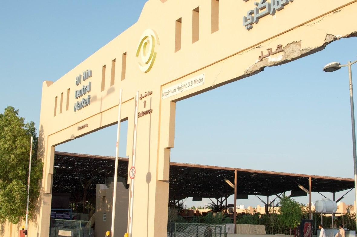 Entrance, Camels, Camel Market, Al Ain, UAE
