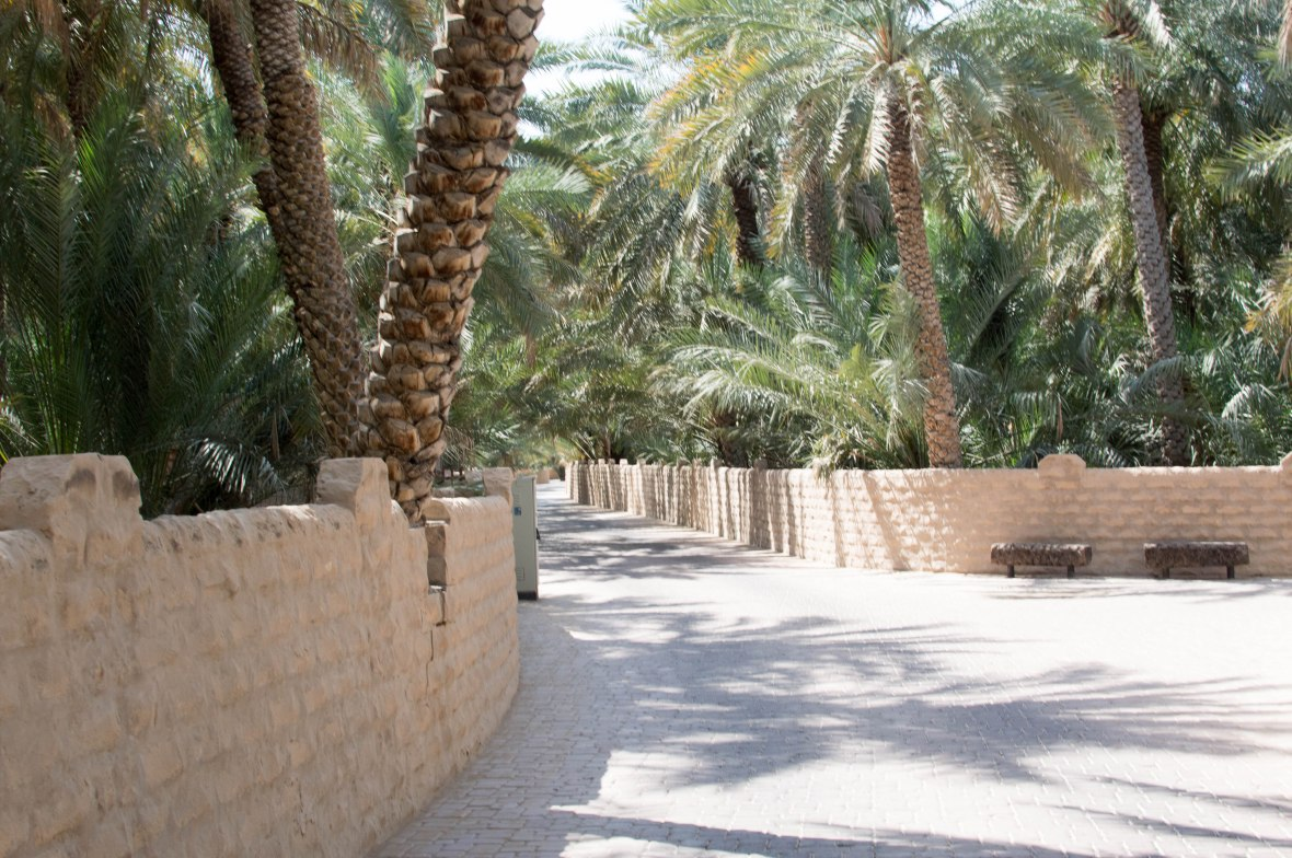 Pathway, Al Ain Oasis, Al Ain, UAE (2)