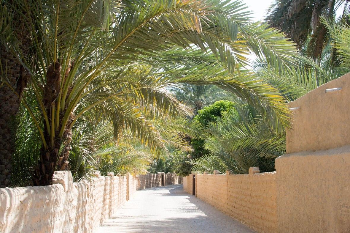 Pathway, Al Ain Oasis, Al Ain, UAE (3)