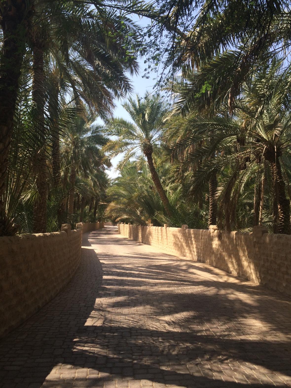 Pathway, Al Ain Oasis, Al Ain, UAE