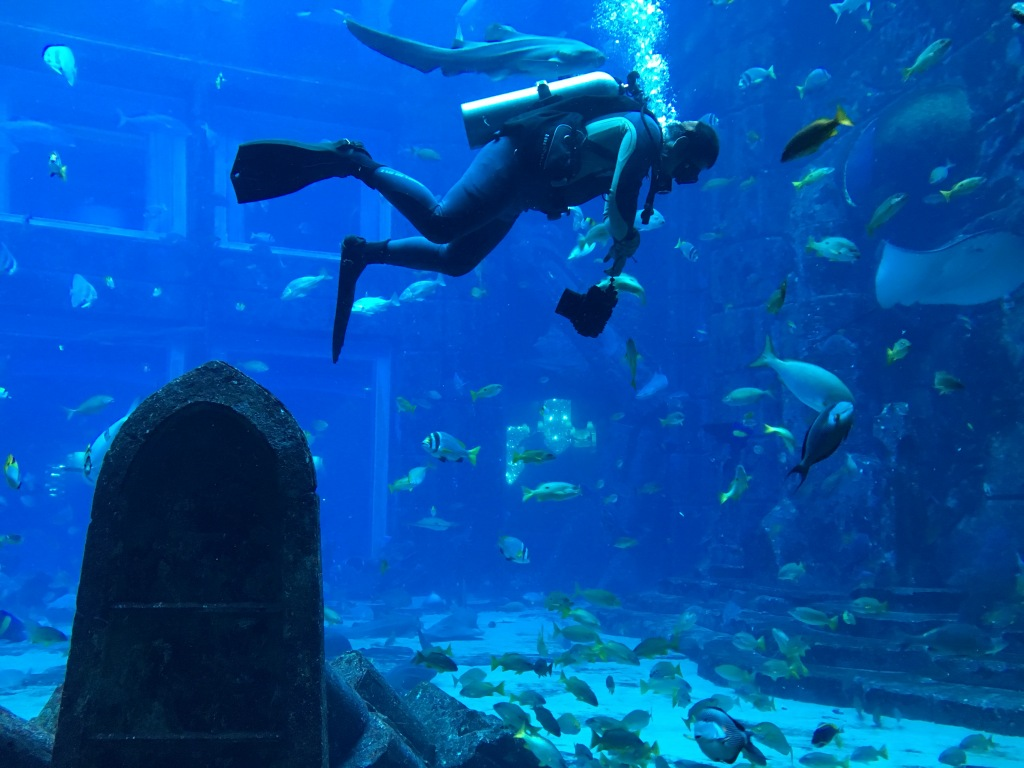 Scuba Diving, Lost Chambers Aquarium, Dubai, UAE
