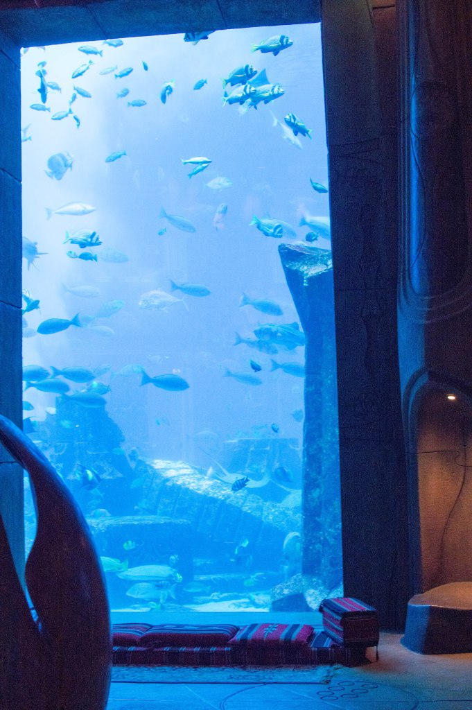 Seats, Large Fish Tank, Atlantis Aquarium, Palm Jumeirah, Dubai, UAE