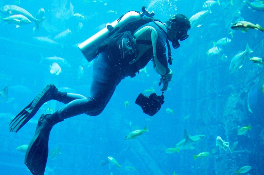 Snorkeller, Atlantis Aquarium, Palm Jumeirah, Dubai, UAE