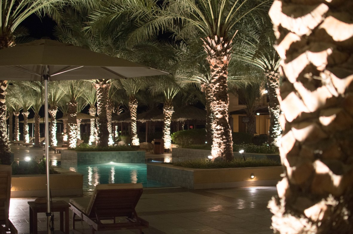 Palm Trees And Pool, Hilton Resort, Ras Al Khaimah, UAE