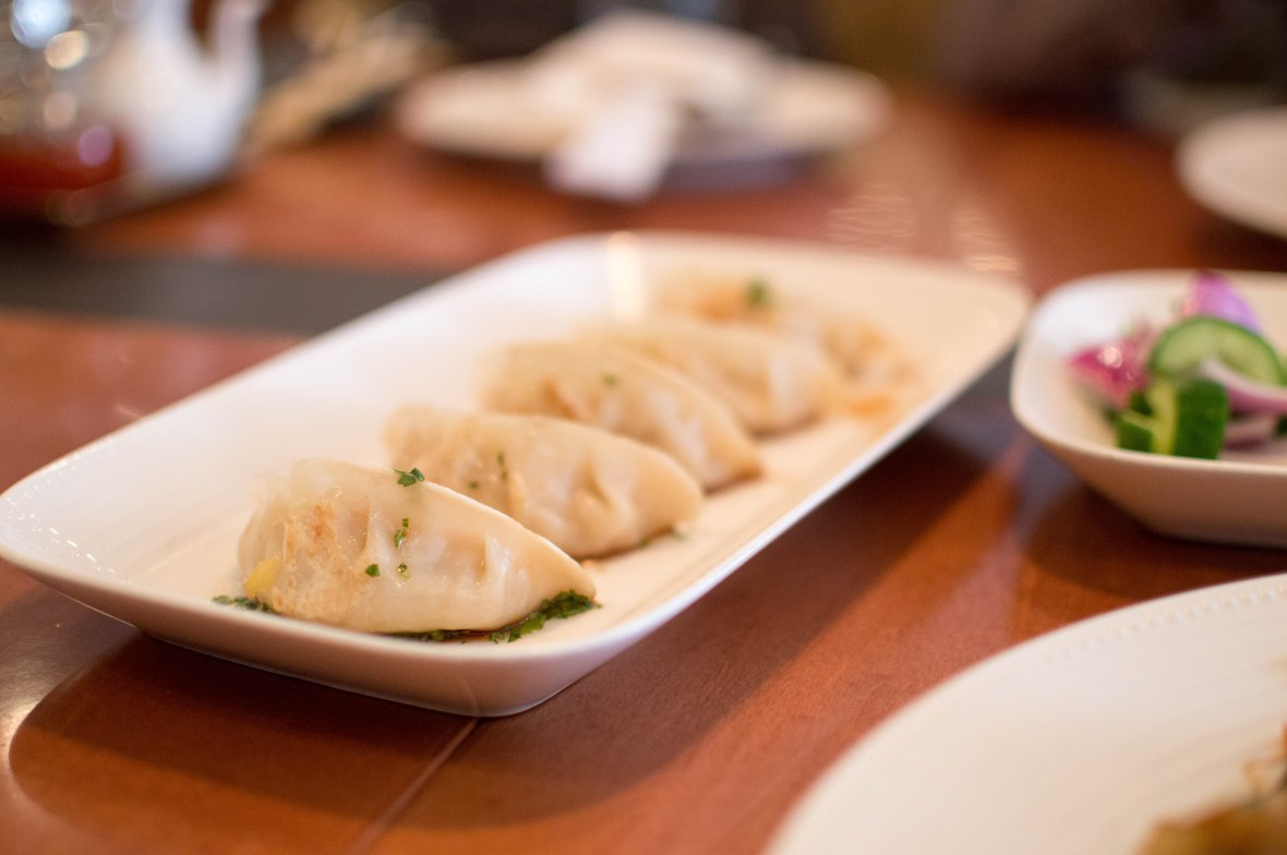 Vegetable Pot Stickers, The Noodle House, Gloria Hotel, Dubai, UAE