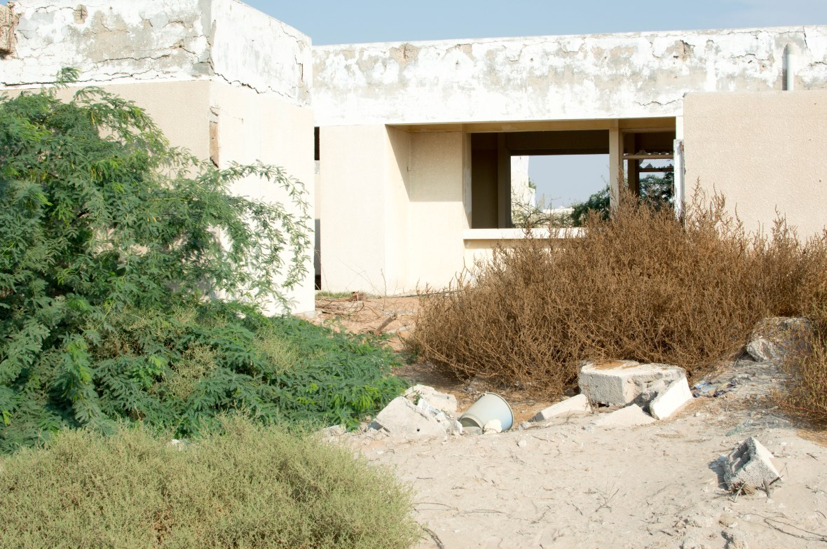 Overgrown Plants, Abandoned City, Al Jazirat Al Hamra, Ras Al Khaimah, UAE