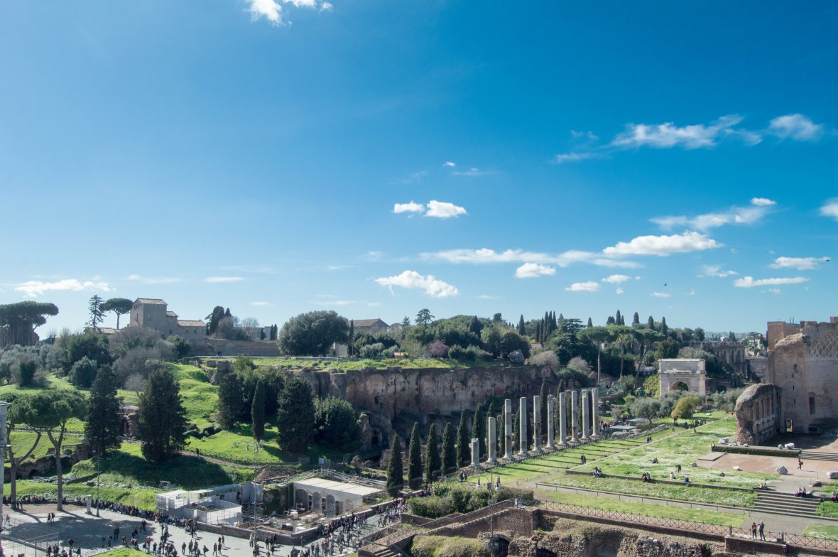 Palatine Hill View From The Colosseum, Rome, Italy