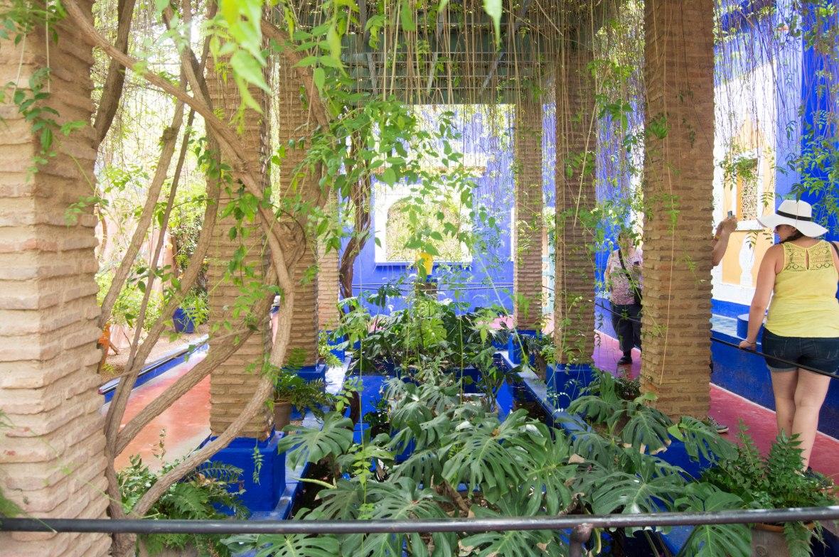 Exploring, Majorelle Garden, Marrakech, Morocco
