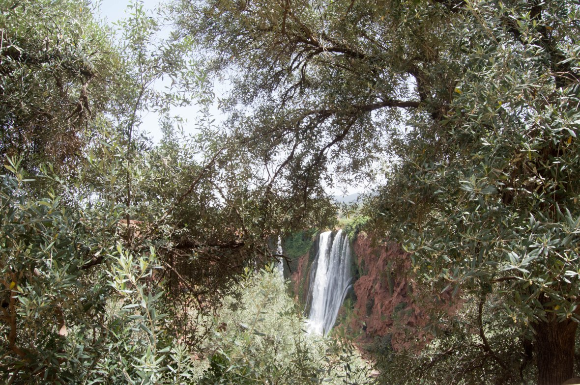Glimpse Of Ouzoud Falls Through The Trees, Morocco