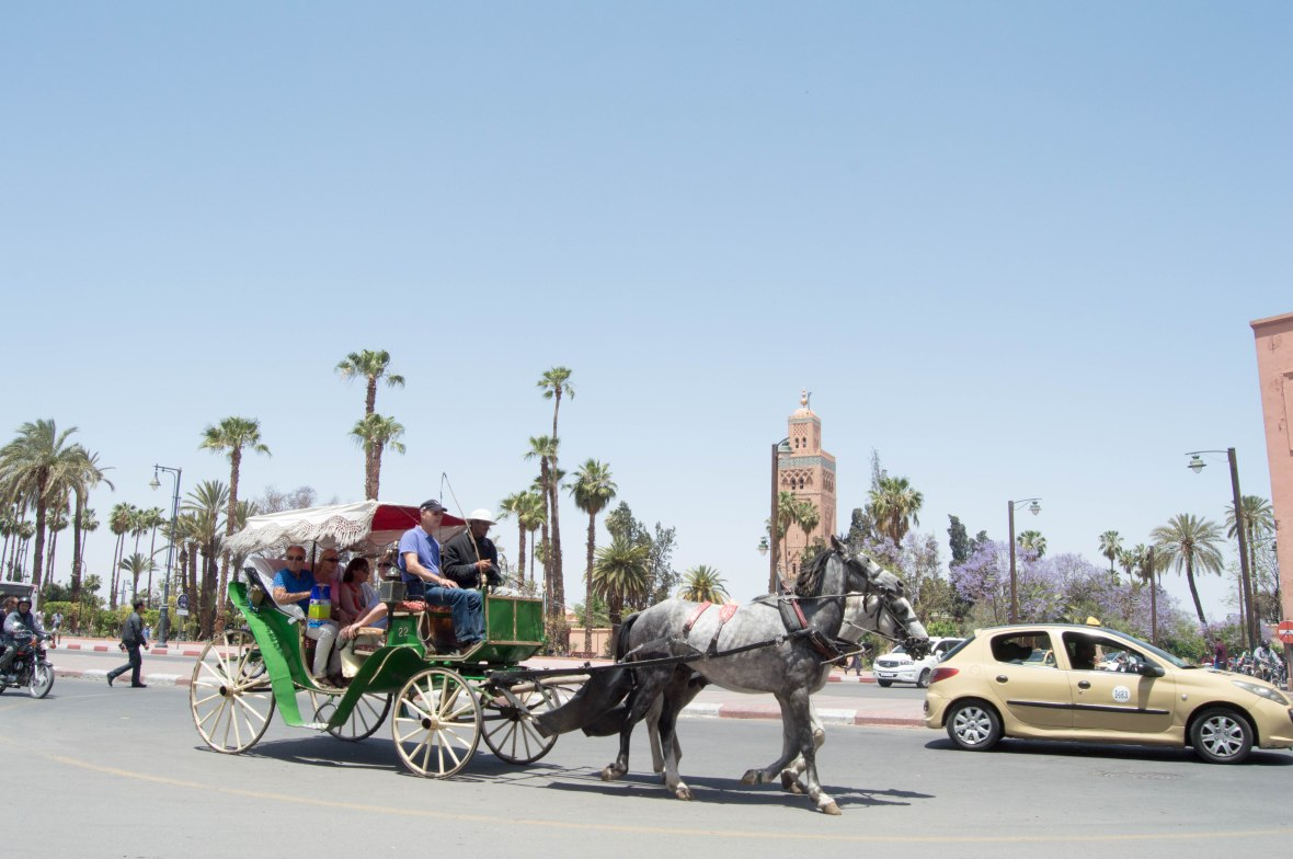 Horse And Carriage By The Koutoubia Mosque, Marrakech, Morocco