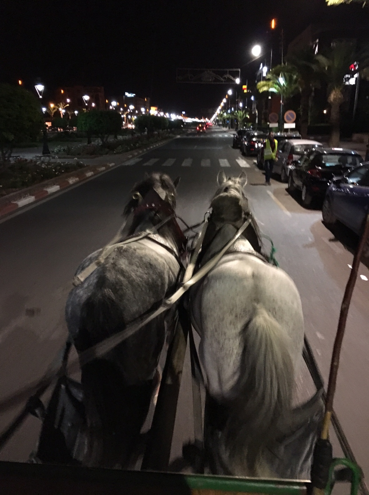 Horse And Carriage Ride by Nightfall, Marrakech, Morocco