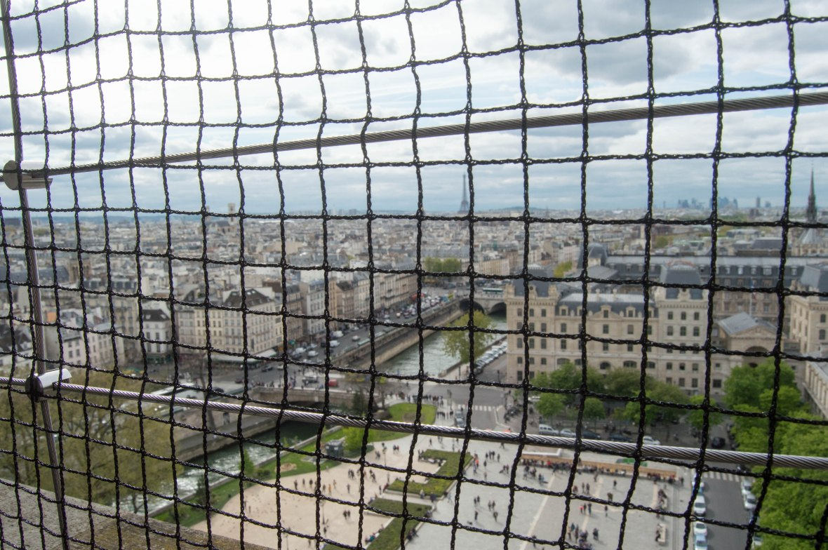 View From Notre Dame, Paris, France