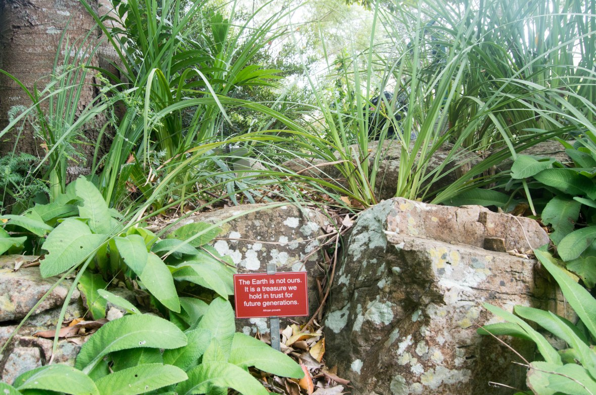 african-proverb-kirstenbosch-national-botanical-garden-cape-town-south-africa