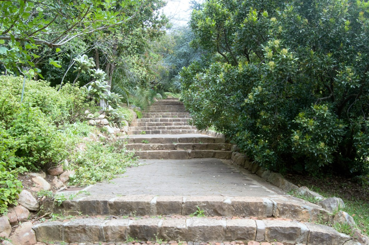 stairs-kirstenbosch-national-botanical-garden-cape-town-south-africa