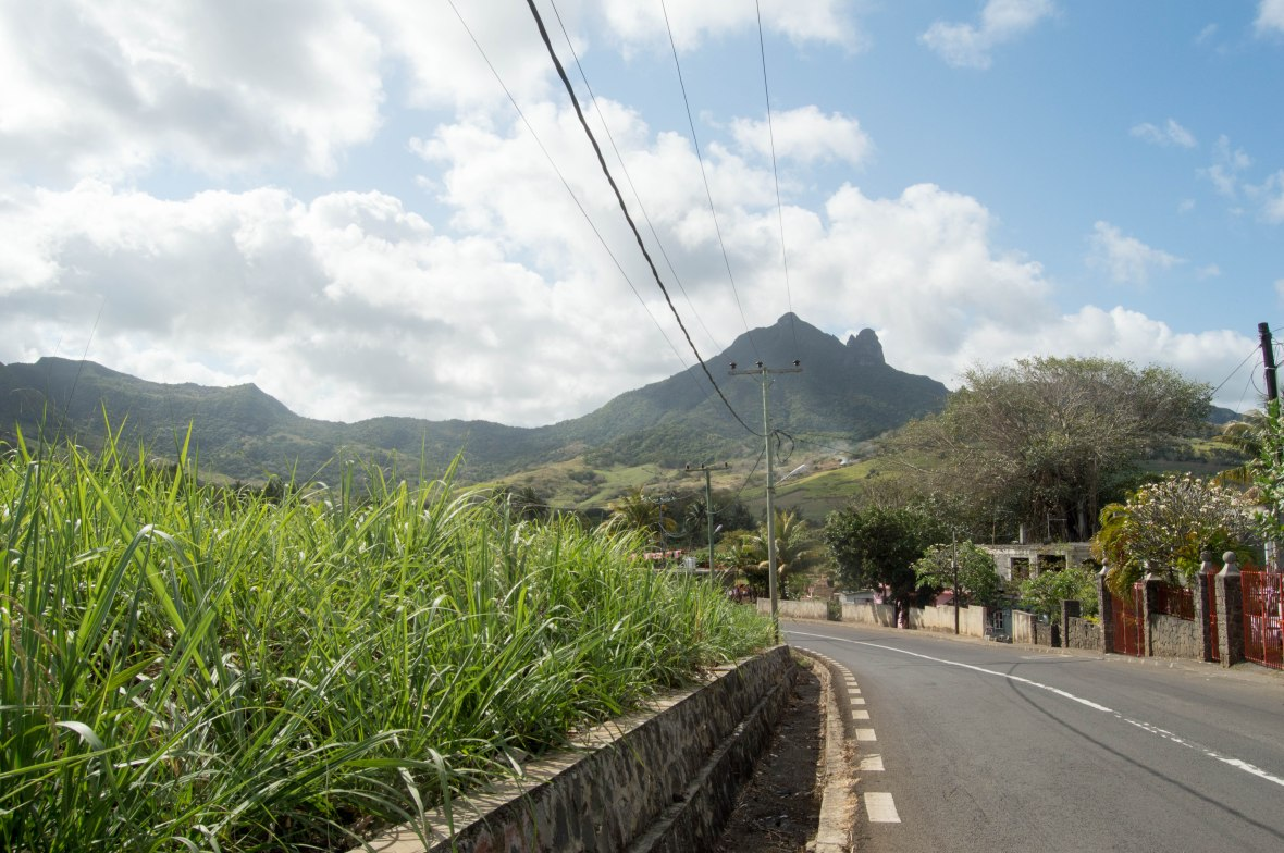 driving-through-mauritius