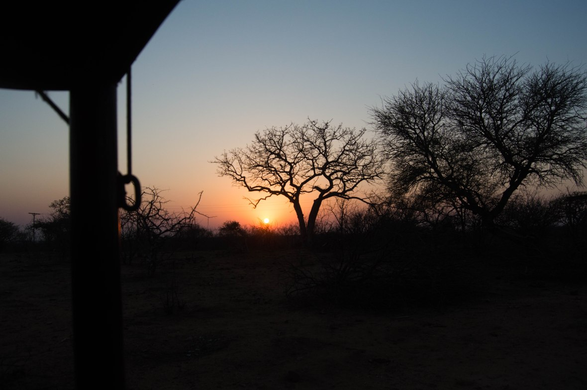 sunset-on-safari-kruger-national-park-south-africa