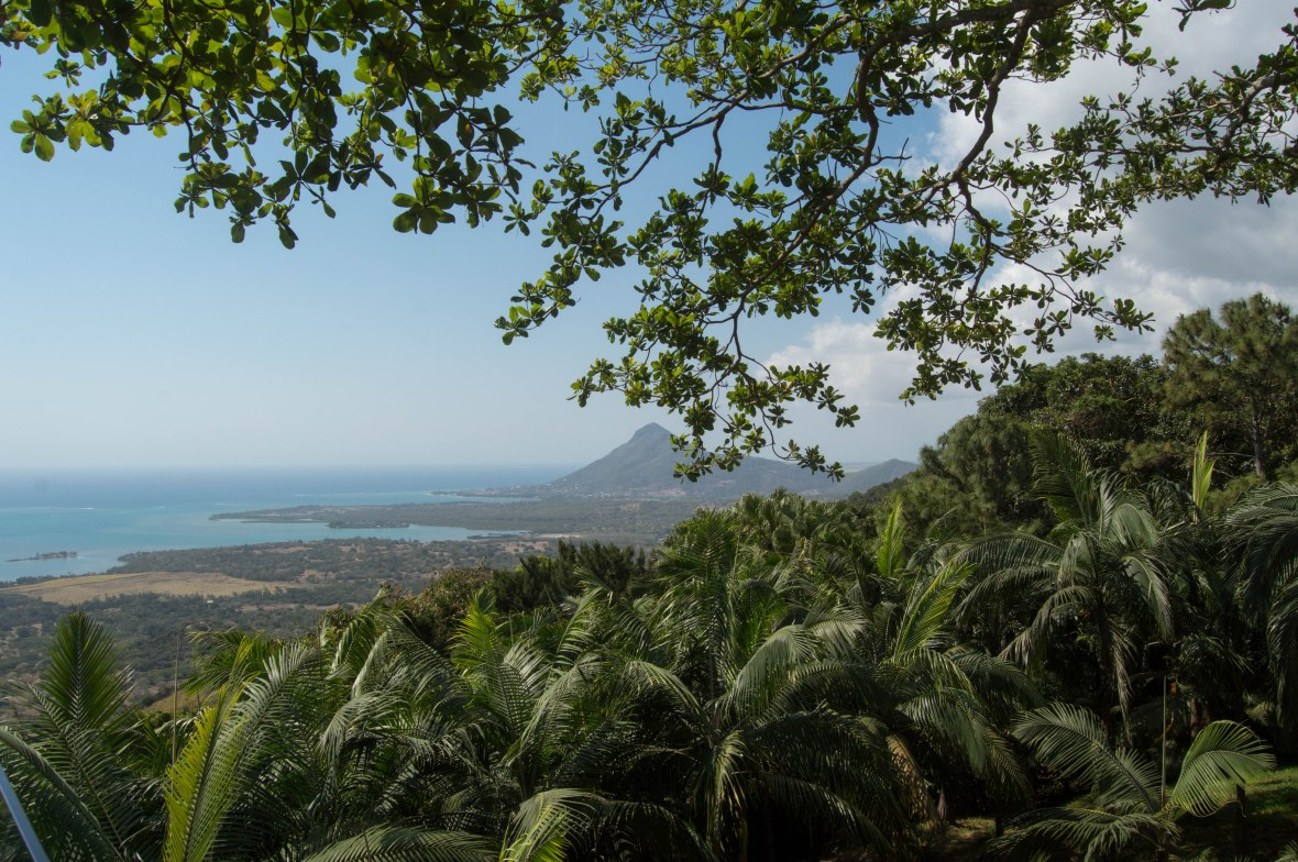 view-from-tamarin-mauritius