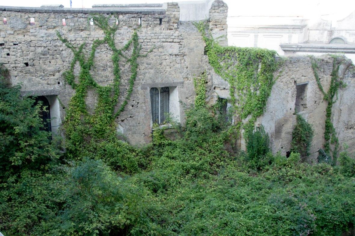 Overgrown Plants, Castel Sant'Elmo, Naples, Italy
