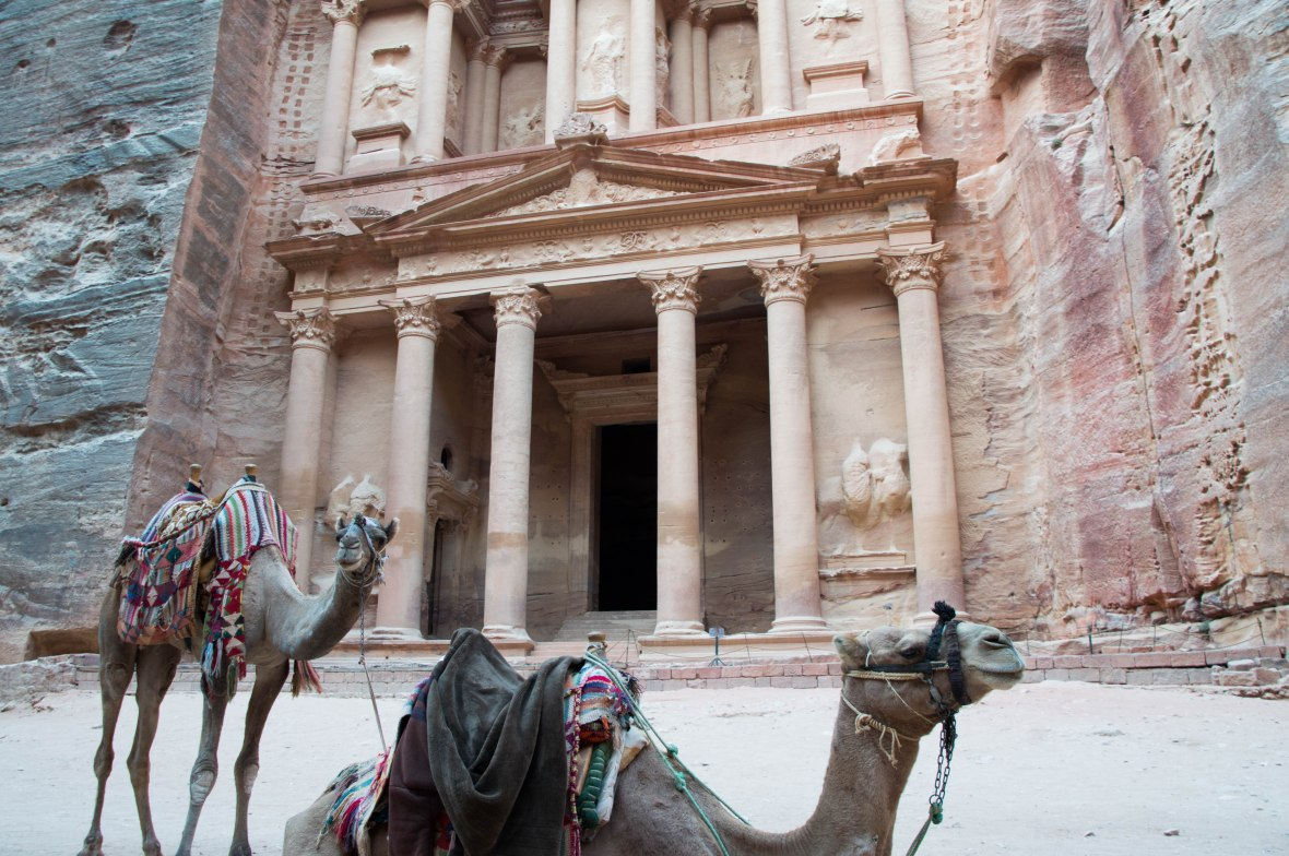 Camels At The Treasury, Petra, Jordan