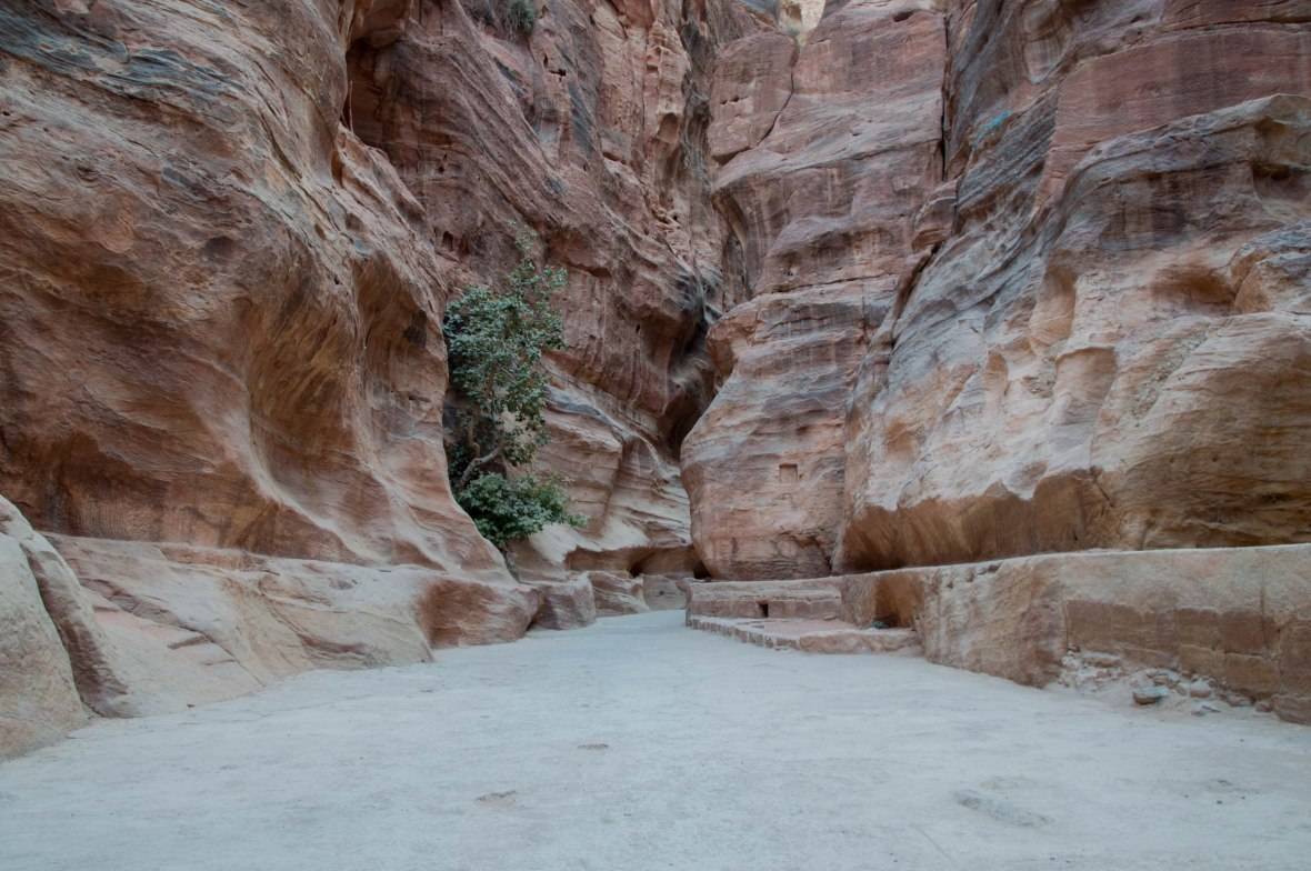 The Siq Entrance, Petra, Jordan