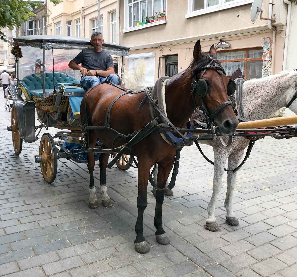 horse and carriage, heybeliada island, adalar, princes islands, istanbul