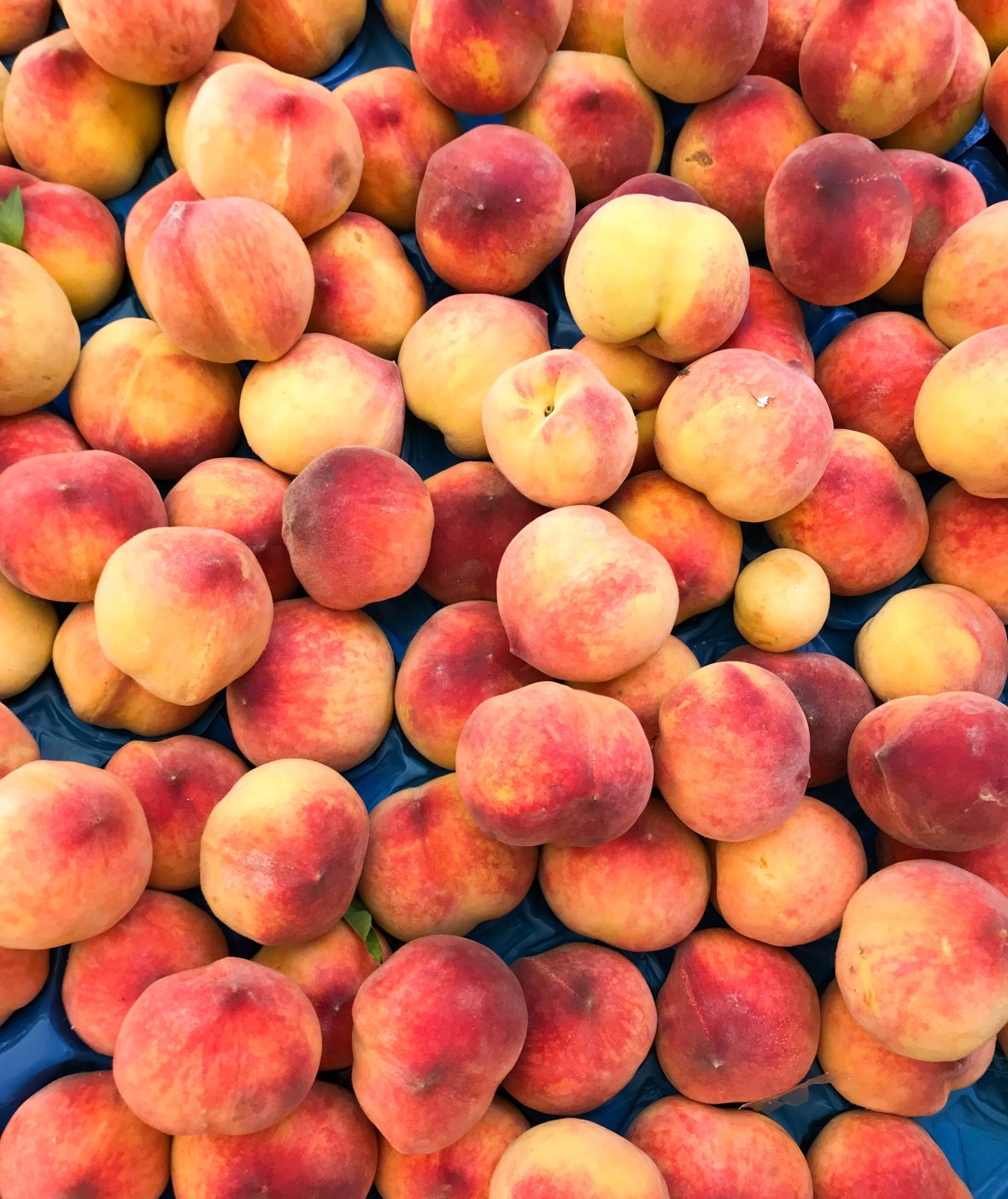 peaches, heybeliada island, adalar, princes islands, istanbul