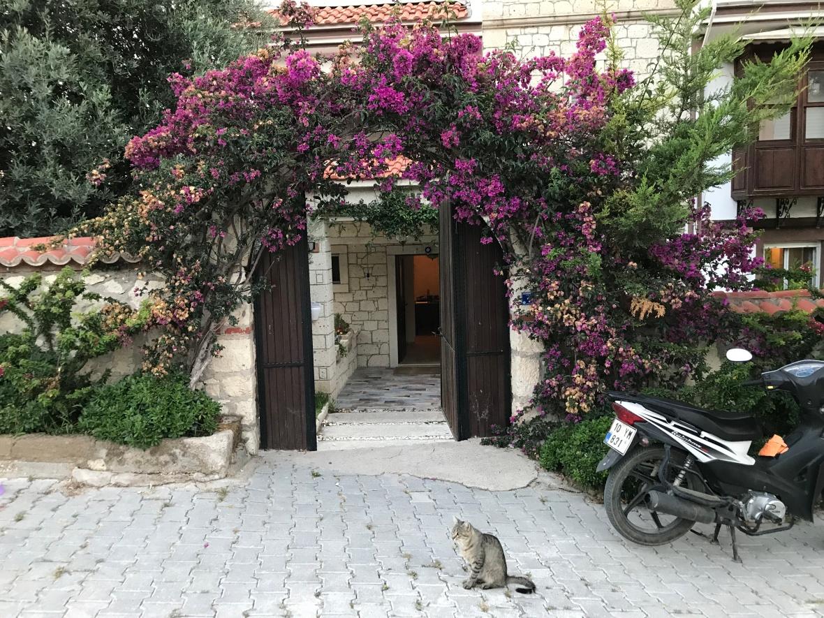 Entrance, Alacati Yamac Evi Hotel, Alaçatı, Turkey