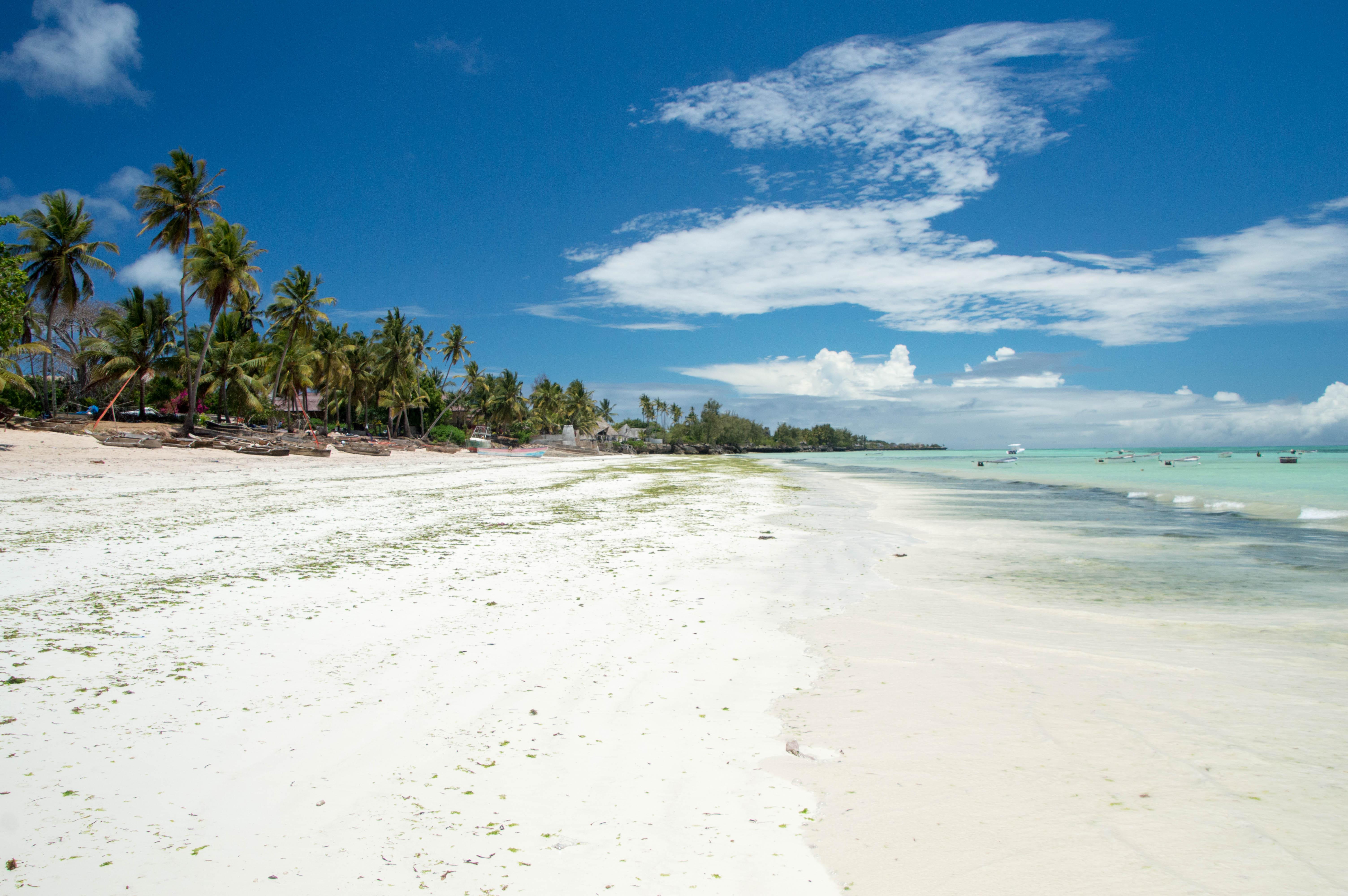 Kizimkazi Beach, Zanzibar, Tanzania (3)